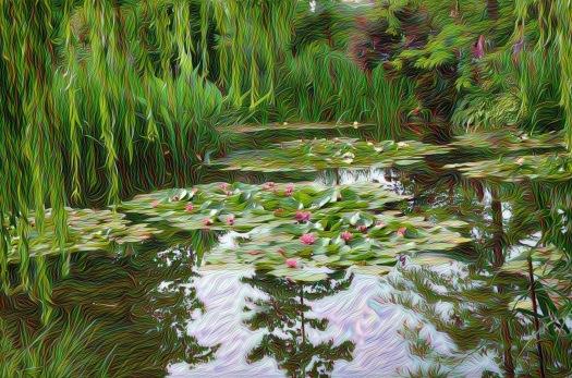Nenúfares a la Monet